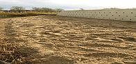 Rubriek; Gemeenten geven kennis over natuurwetgeving door – Gemeente Langedijk