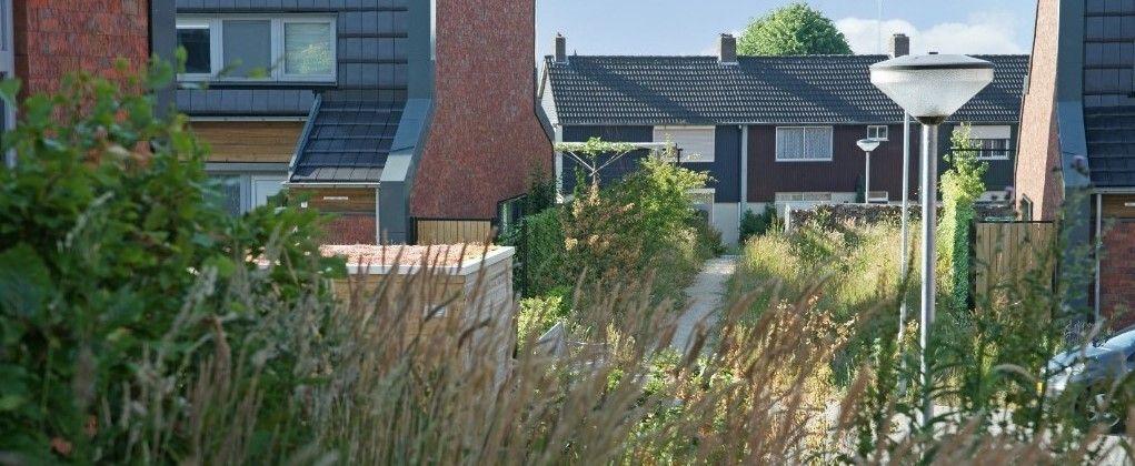 Green Deal, groene woonwijk